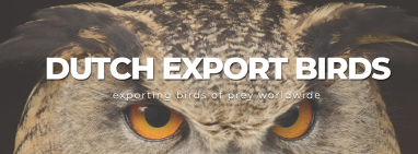 Dutchexportbirds